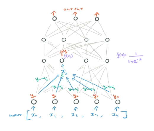 Learning representations by back-propagating errors